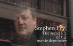 Stephen Fry - The Secret Life of the Manic Deperssive